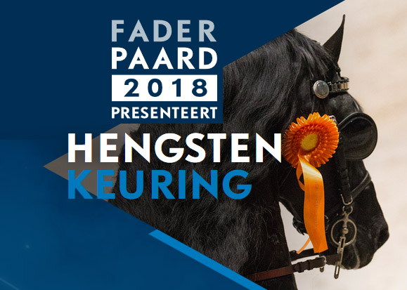 Three stallions invited for 3rd viewing at Faderpaard!