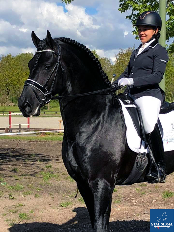 dressage mellanie welles